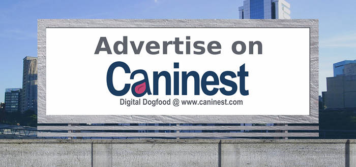 Advertise on Caninest