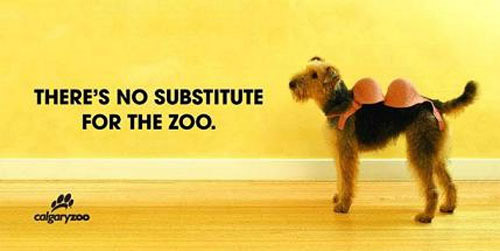 Clever Calgary Zoo Dog Ad
