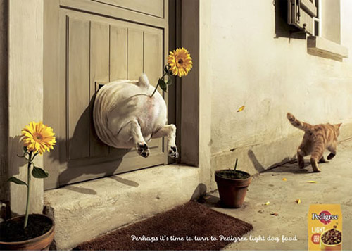 Clever Pedigree Ad
