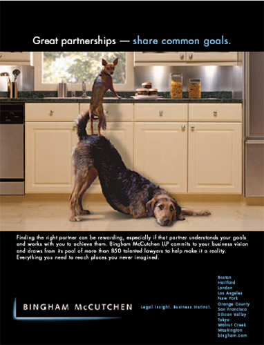 Clever Dog Law Firm Ad