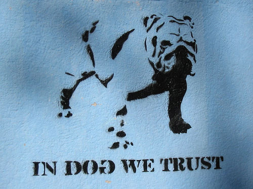 Dog Graffiti