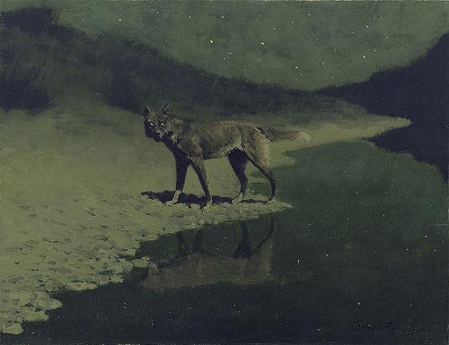 Moonlight, Wolf